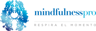 MindFulness Pro Logo